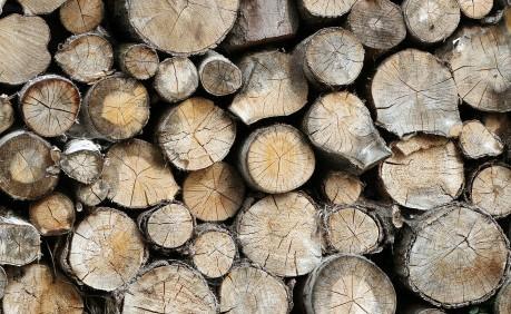 Palivové-drevo-pre-rodinku-na-vykurovanie-počas-zimy
